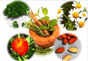 Разнообразные растения хорошо помогают