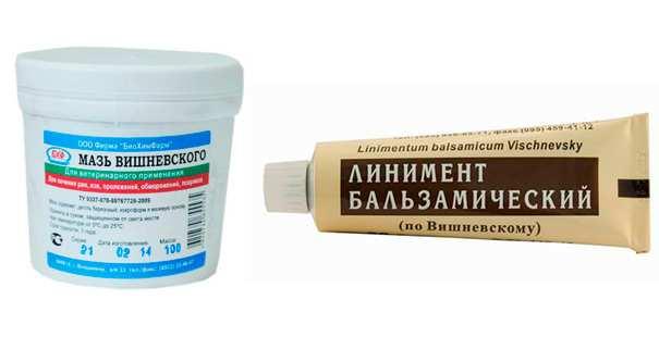 Мазь Вишневского при беременности: можно ли использовать, инструкция и рекомендации по применению, отзывы о безопасности