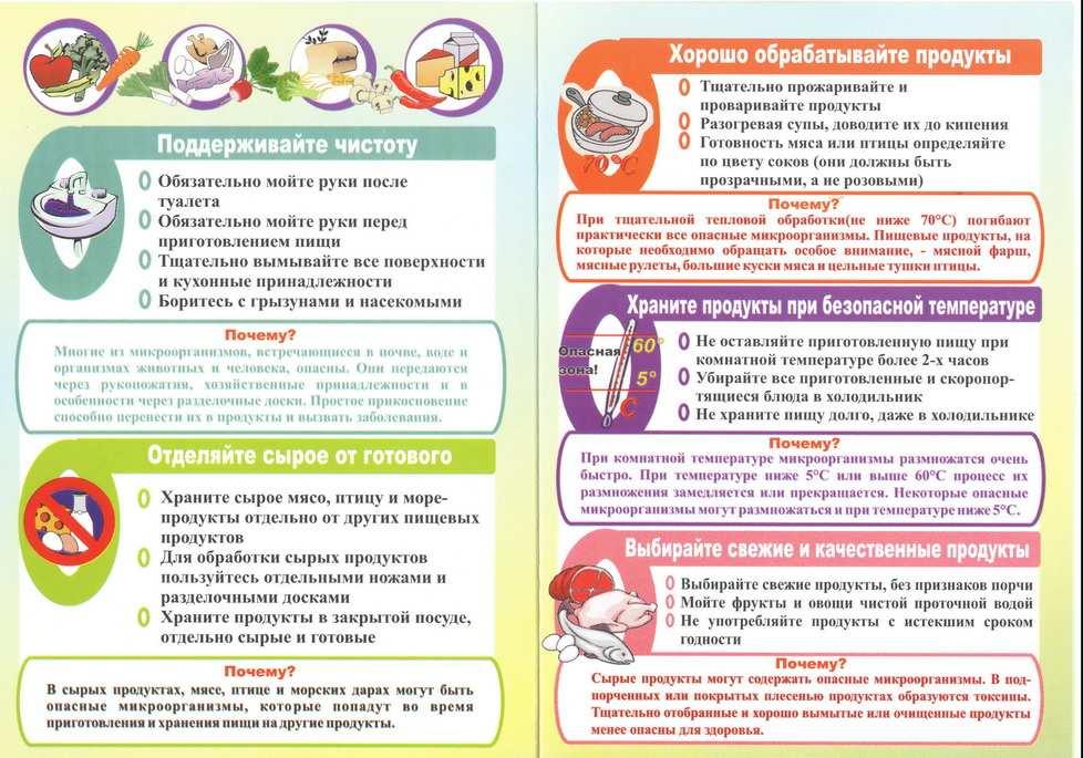 Гемолизирующая кишечная палочка у малышей